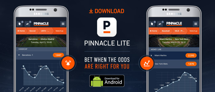 en-pinnacle-lite-in-article-android.jpg
